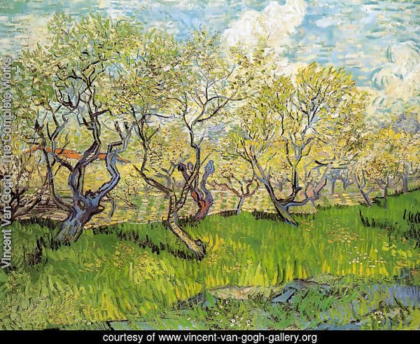 Orchard in Blossom I