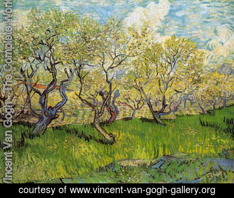 Vincent Van Gogh - Orchard in Blossom I
