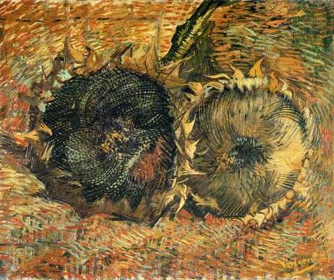 Vincent Van Gogh - Still Life with Two Sunflowers