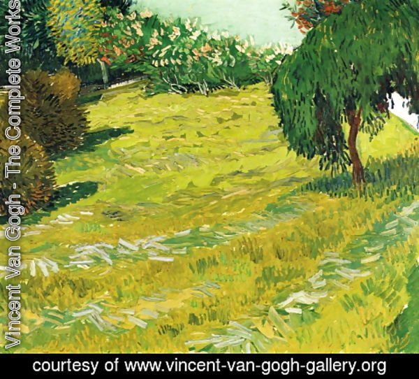 Vincent Van Gogh - Garden with Weeping Willow