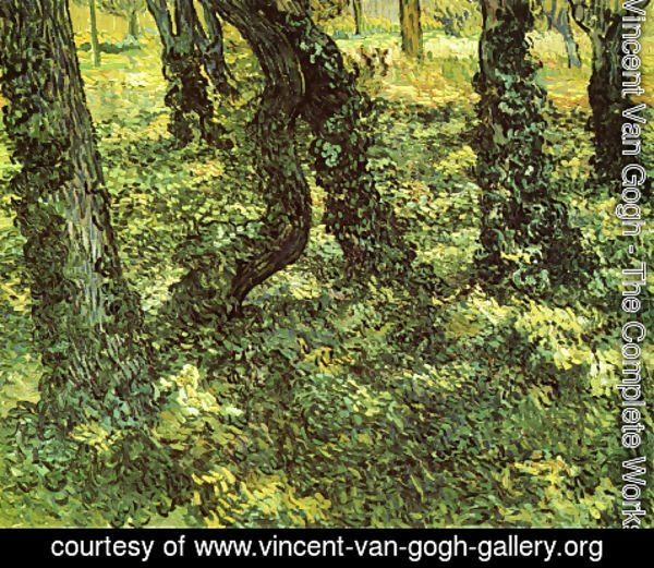 Vincent Van Gogh - Trunks of Trees with Ivy