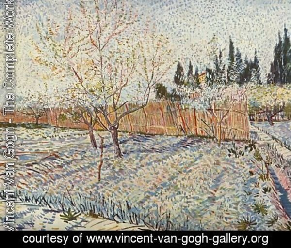 Vincent Van Gogh - field on winter