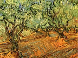 Vincent Van Gogh - Olive Grove Bright Blue Sky 1889