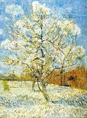 Vincent Van Gogh - The Pink Peach Tree 1 1888