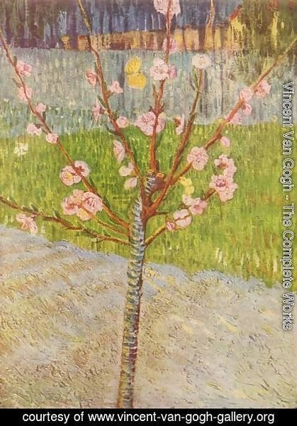 Vincent Van Gogh - Blossoming peach tree