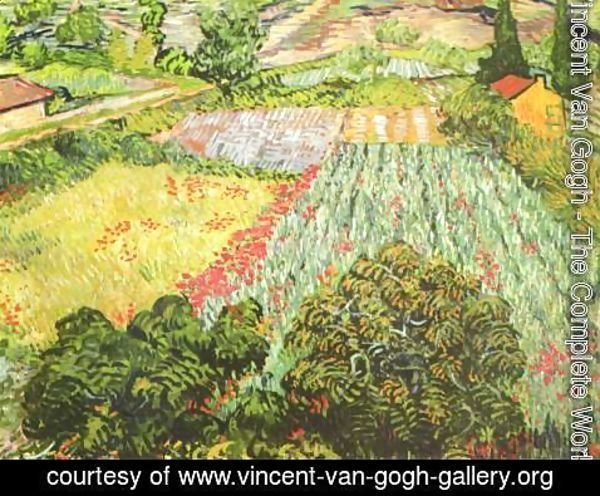 Vincent Van Gogh - The Poppy Field