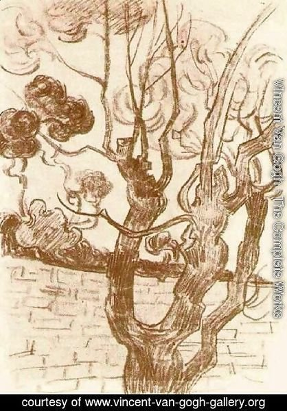 Vincent Van Gogh - Treetop Seen against the Wall of the Asylum