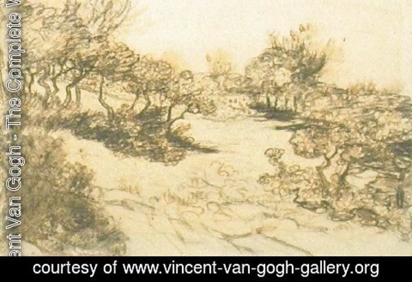 Vincent Van Gogh - Hill with Bushes