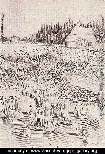 Vincent Van Gogh - Landscape with Hut in the Camargue