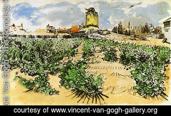 Vincent Van Gogh - The Mill of Alphonse Daudet at Fontevieille