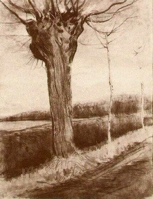 Vincent Van Gogh - Pollard Willow 3