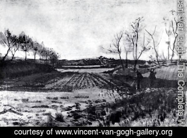 Vincent Van Gogh - Potato field behind the dunes