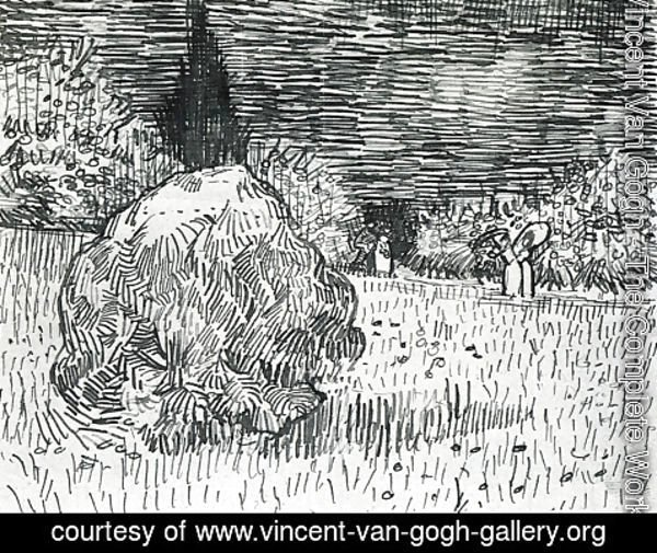 Vincent Van Gogh - Bush in the Park at Arles
