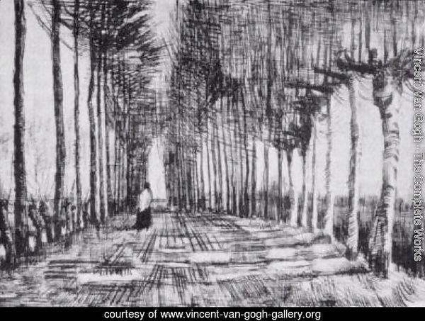 Lane with Trees and One Figure