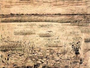 Vincent Van Gogh - Marsh with Water Lillies
