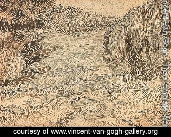 Vincent Van Gogh - Newly Mowed Lawn with Weeping Tree