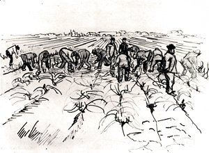 Vincent Van Gogh - Farmers Working in the Field