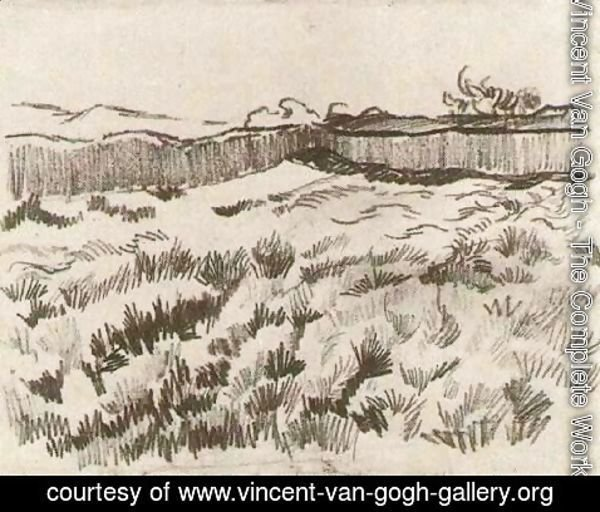 Vincent Van Gogh - Enclosed Field