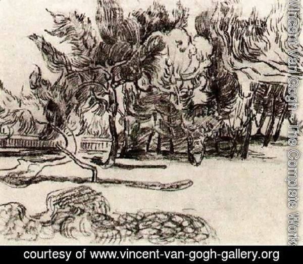 Vincent Van Gogh - Pine Trees near the Wall of the Asylum 2