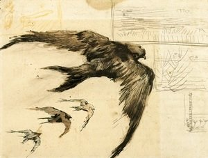 Vincent Van Gogh - Four Swifts with Landscape Sketches