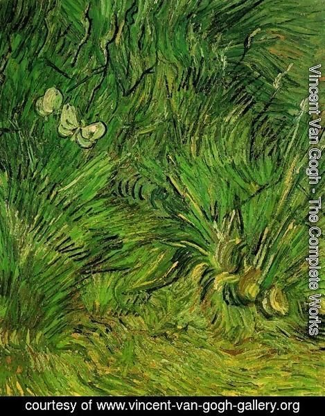 Vincent Van Gogh - Two White Butterflies 2