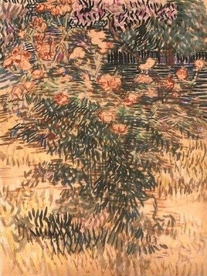 Vincent Van Gogh - Oleanders, the Hospital Garden at Saint-Remy