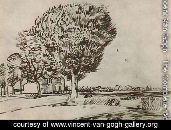 Vincent Van Gogh - Road with Trees