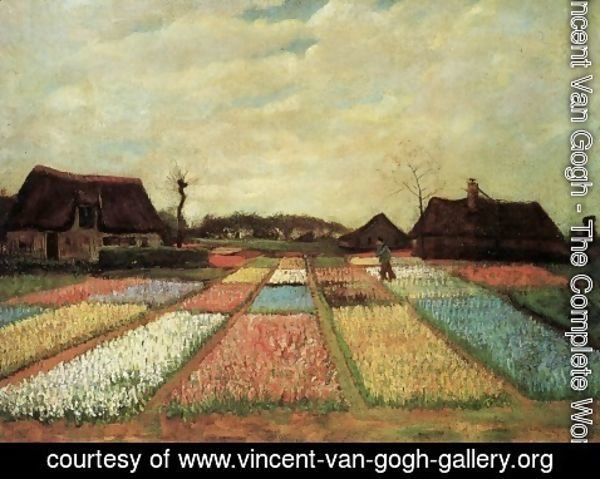 Vincent Van Gogh - Bulb Fields