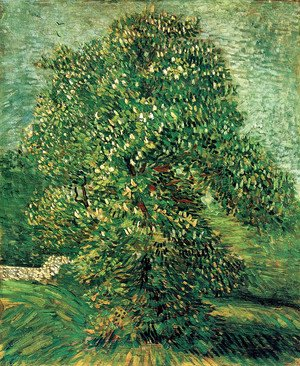 Vincent Van Gogh - Chestnut Tree In Blossom II