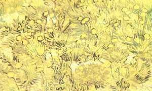 Vincent Van Gogh - Field Of Yellow Flowers A