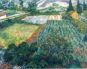 Vincent Van Gogh - Field With Poppies II