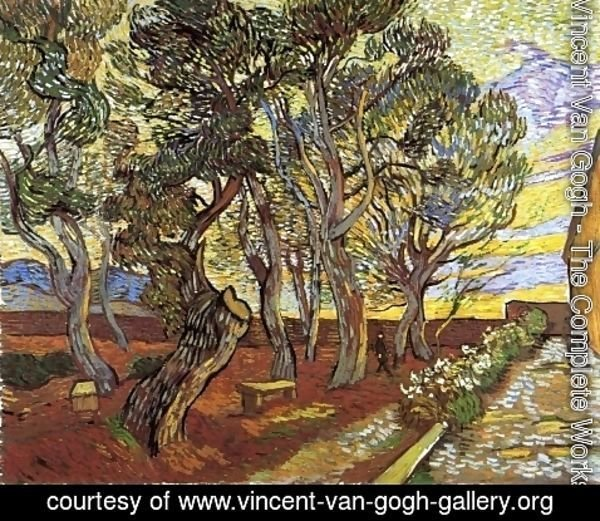Vincent Van Gogh - The Garden Of Saint Paul Hospital