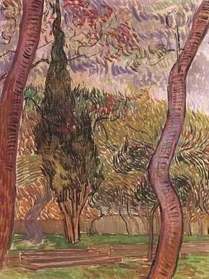 Vincent Van Gogh - Garden Of Saint Paul Hospital The IV