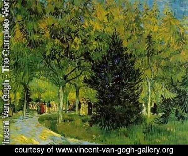 Wonderful Lane In The Public Garden At Arles A