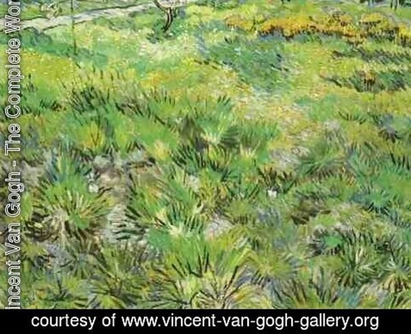 Vincent Van Gogh - Meadow In The Garden Of Saint Paul Hospital