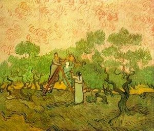 Vincent Van Gogh - Olive Picking II