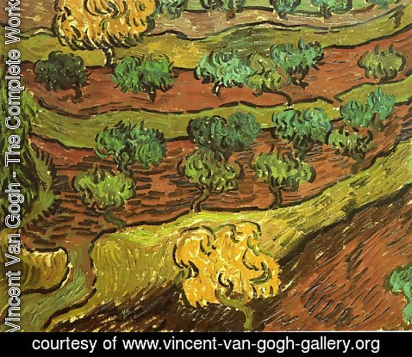 Vincent Van Gogh - Olive Trees Against A Slope Of A Hill