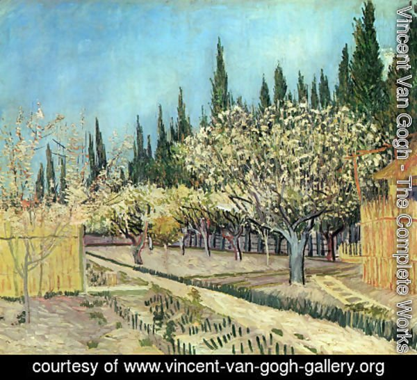 Vincent Van Gogh - Orchard In Blossom Bordered By Cypresses II