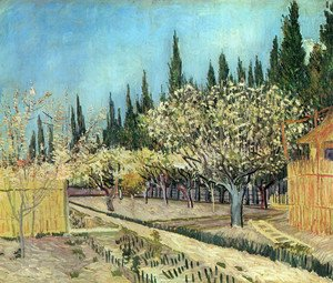 Orchard In Blossom Bordered By Cypresses II