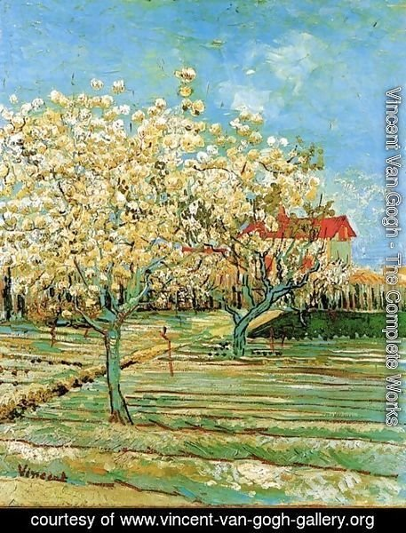 Vincent Van Gogh - Orchard In Blossom II