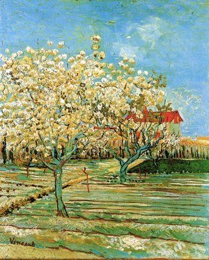 Orchard In Blossom II