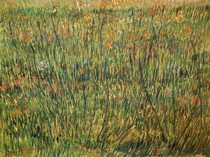 Vincent Van Gogh - Pasture In Bloom