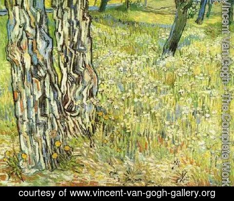Vincent Van Gogh - Pine Trees And Dandelions In The Garden Of Saint Paul Hospital