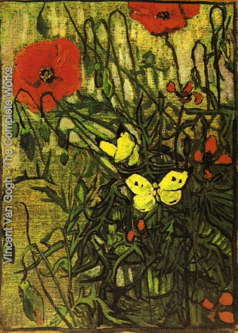 Vincent Van Gogh - Poppies And Butterflies