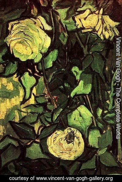 Vincent Van Gogh - Roses And Beetle