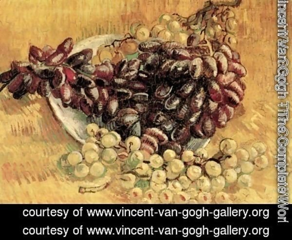 Vincent Van Gogh - Still Life With Grapes