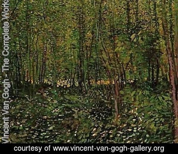 Vincent Van Gogh - Trees And Undergrowth II