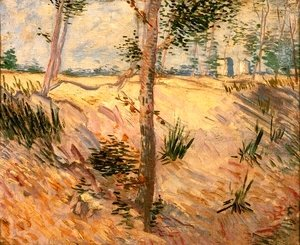 Vincent Van Gogh - Trees In A Field On A Sunny Day