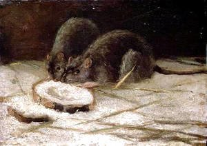 Vincent Van Gogh - Two Rats