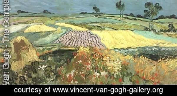 Vincent Van Gogh - Wheat Fields Near Auvers